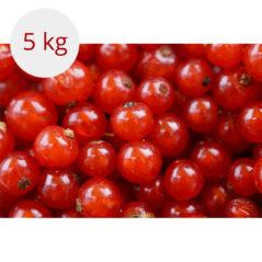 czerwona porzeczka 5 kg
